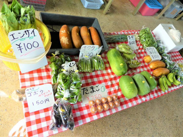 石垣島野菜がたくさん